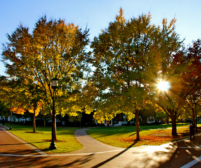 Johns Hopkins University in fall